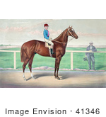 #41346 Stock Illustration Of A Rider James Roe On The Back Of A Horse Harry Bassett