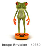 #49530 Royalty-Free (Rf) Illustration Of A 3d Red Eyed Tree Frog Standing On A Scale - Pose 1