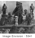 #5341 Monkeys And Bear Playing Instruments