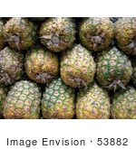 #53882 Royalty-Free Stock Photo Of A Pineapples