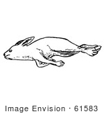 #61583 Clipart Of A Dead Rabbit In Black And White - Royalty Free Vector Illustration