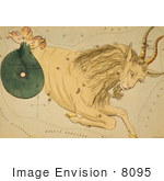 #8095 Picture Of Capricornus Constellation