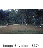 #8374 Picture Of Eis Officers Playing Frisbee At Refugee Camps In Nigeria - 1967