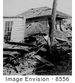 #8556 Picture Of Dead Bodies After The Galveston Disaster