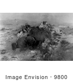 #9800 Picture Of Indians Killing Buffalo