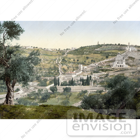 #14401 Picture of Mount Olivet and Garden of Gethsemane by JVPD