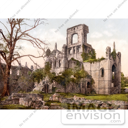 #17790 Photo of Bare Tree and Ruins of Kirkstall Abbey in Leeds, Yorkshire, England by JVPD