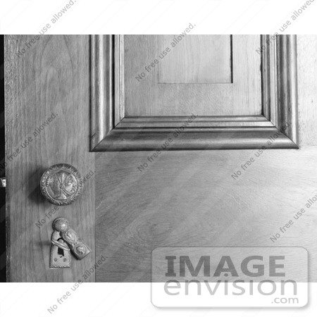Stock Door Paneling Knob and Open Key Plate With Skeleton
