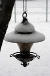 Bird Feeder Covered in Snow