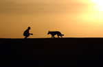 Man and Dog at Sunset