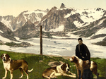 Man with St Bernard Dogs