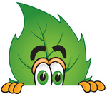 Clip Art Graphic of a Green Tree Leaf Cartoon Character Peeking Over a Surface