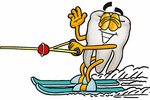 Clip Art Graphic of a Human Molar Tooth Character Waving While Water Skiing