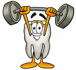 Clip Art Graphic of a Human Molar Tooth Character Holding a Heavy Barbell Above His Head