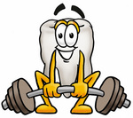 Clip Art Graphic of a Human Molar Tooth Character Lifting a Heavy Barbell