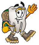 Clip Art Graphic of a Human Molar Tooth Character Hiking and Carrying a Backpack